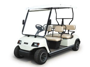4-Seater Electric Sightseeing Car